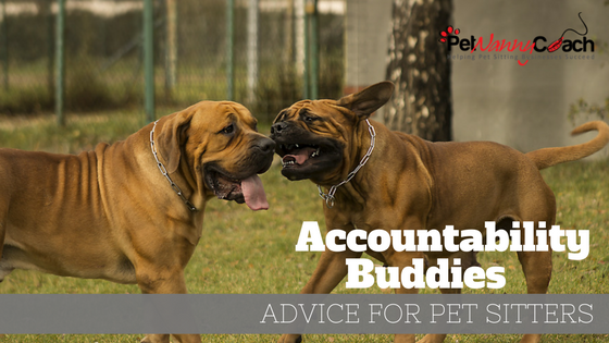 Accountability Buddies for Pet Sitters