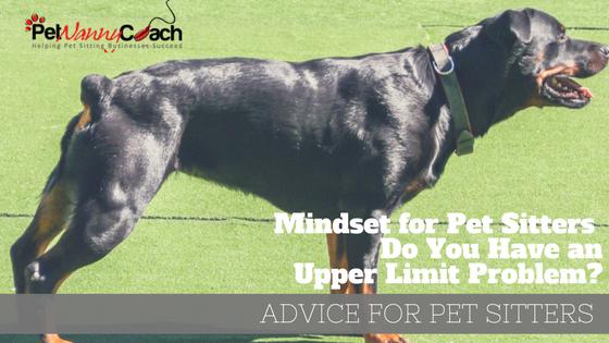 Mindset for Pet Sitters